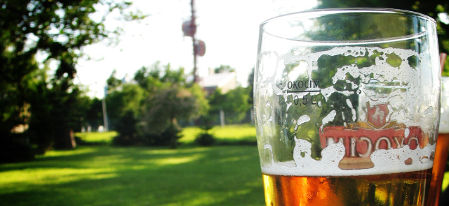 Piwo zwiększa poziom magnezu we krwi