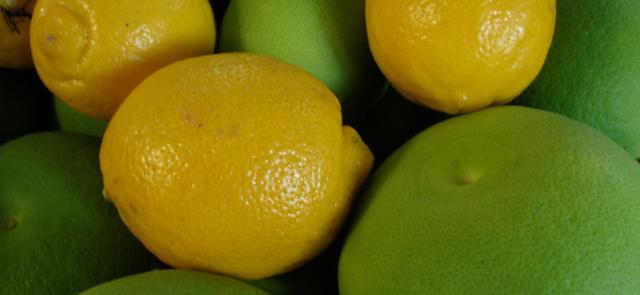 Flawonoidy zawarte w owocach cytrusowych przyspieszają spalanie tłuszczu