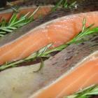 Jak wzmocnić swoją odporność za pomocą diety