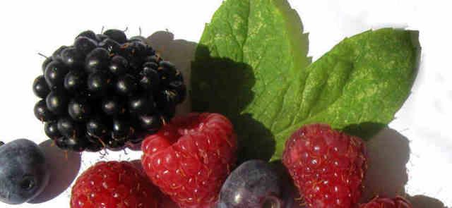 Dlaczego warto włączyć owoce do diety odchudzającej