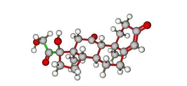 Jak działa hormon wzrostu?