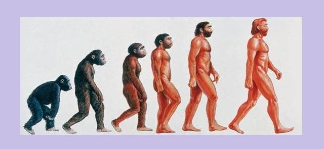 Euforia biegacza to dar ewolucji?