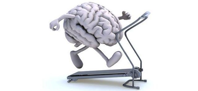 Trening czyni mądrym, czyli kilka słów o tym jak wysiłek fizyczny poprawia funkcje umysłowe