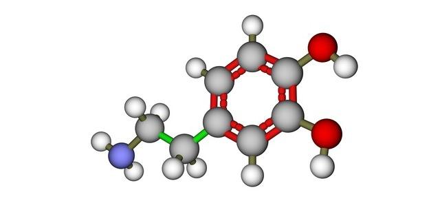 Co powinieneś wiedzieć o kortyzolu?