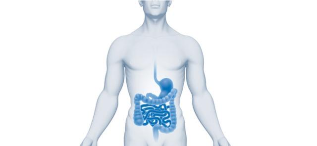 Dziesięć ciekawostek na temat mikroflory jelitowej i jej wpływu na nasze zdrowie