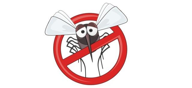 Co jeść, aby uniknąć ukąszeń komarów?