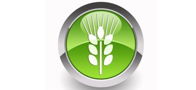 Cztery powody dla których warto jeść węglowodany w posiłkach wieczornych