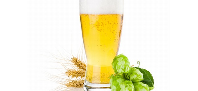 Bioaktywne składniki piwa