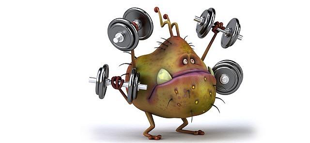 Nadmiar cukrów rafinowanych w diecie niszczy Twoje mięśnie