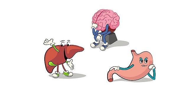 Naukowe ciekawostki na temat odżywiania