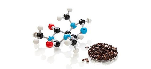 Alkaloidy w żywności – czym są i jak wpływają na organizm?
