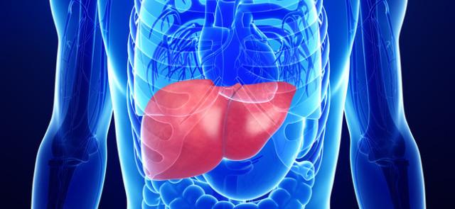 Lecytyna – tani suplement wspomagający wątrobę