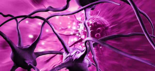 Nadmierna masa ciała zwiększa ryzyko rozwoju chorób nowotworowych