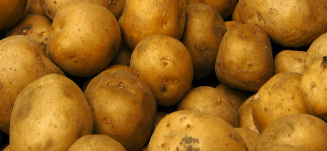 Interesująca historia ziemniaka