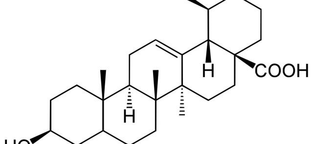 Kwas ursolowy – związek o potencjale anabolicznym naturalnie występujący w żywności