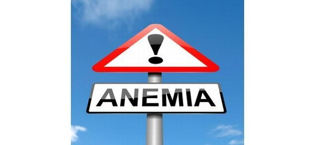 Excessive intake of dietary fiber may increase the risk of anemia