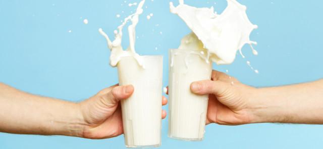 Białka mleczne sprawiają, że termogeniki działają słabiej