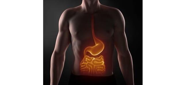 Aktywność fizyczna pozytywnie wpływa na stan mikroflory jelitowe