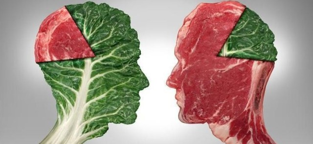 Roślinne i zwierzęce źródła białka, a kaloryczność diety