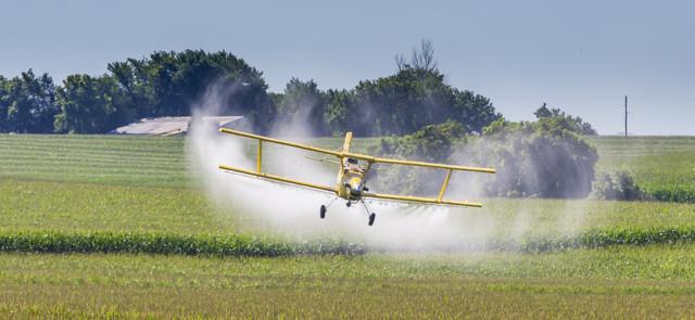 Owoce i warzywa a sprawa pestycydów