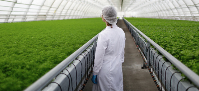 Biopeptydy w żywności – kwestia biodostępności