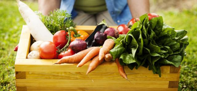 Warzywa - niezbędny element posiłku