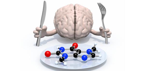 Jak wykorzystać moc synergii składników odżywczych