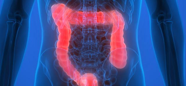 Czy bakterie jelitowe wpływają na metabolizm?