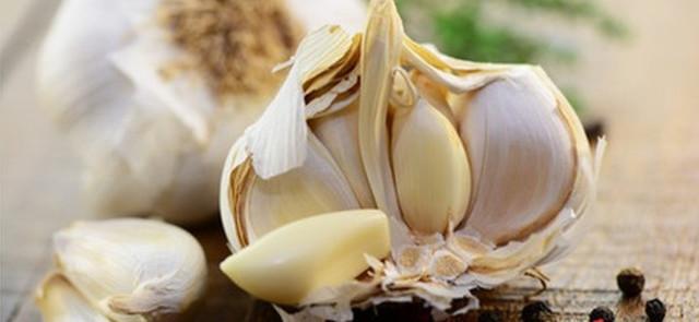 Odkryj korzyści zdrowotne czosnku