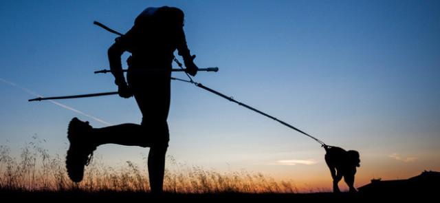 Czy spacer z psem to aktywność fizyczna? Czym jest Dogtrekking?