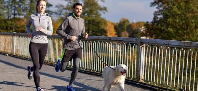 Jak biegać z psem? 6 ciekawych wskazówek!