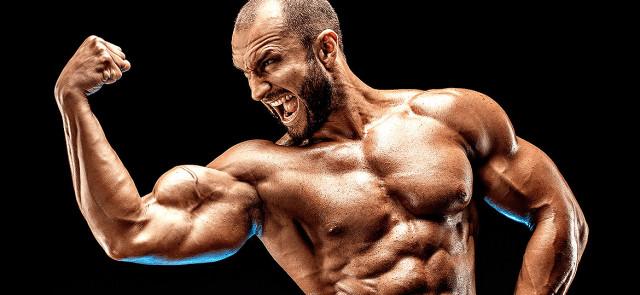 Biceps i Triceps - droga do rozwoju łapy