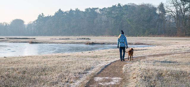 Długie spacery a utrata masy tłuszczowej