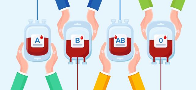 Dieta grup krwi - zasady, efekty, jadłospis