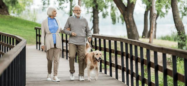 Spacer – dla poprawy zdrowia, jako wsparcie odchudzania