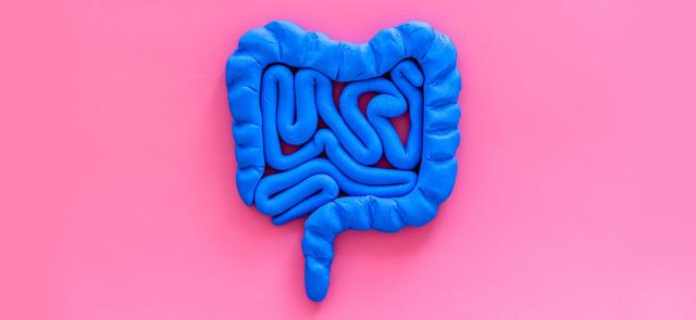 Wpływ bakterii jelitowych na nasze zdrowie