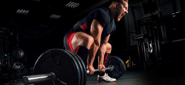 Trening push pull legs- gotowy plan treningowy